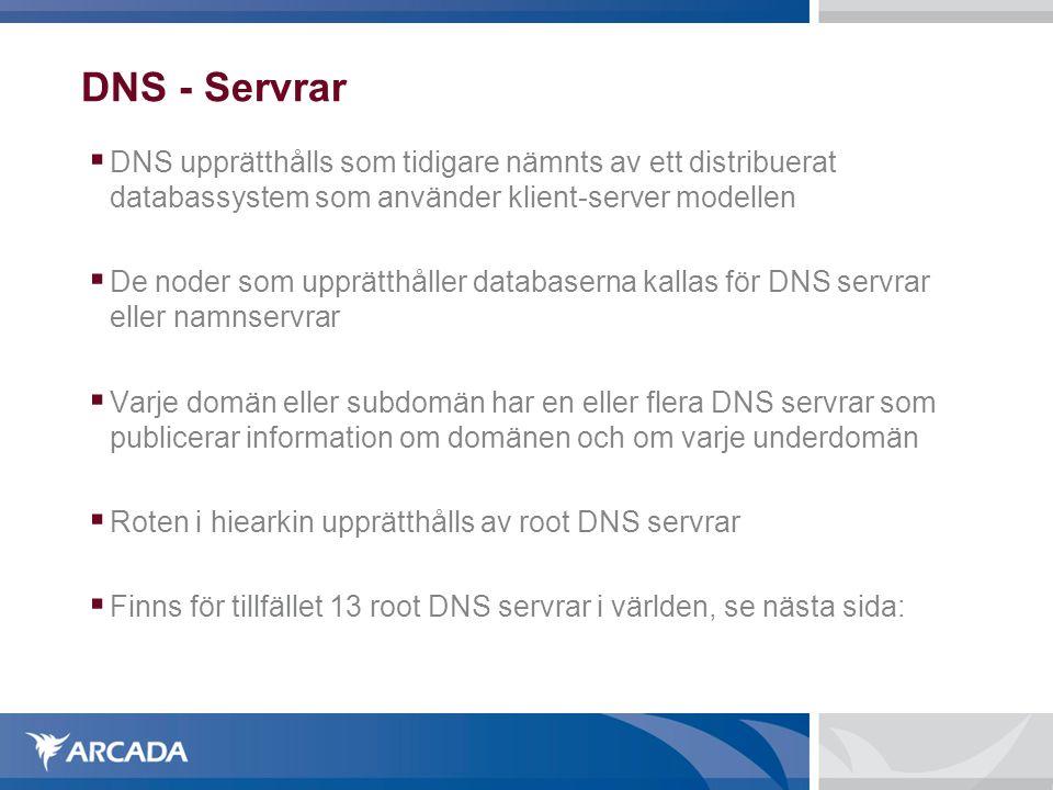 DNS - Servrar DNS upprätthålls som tidigare nämnts av ett distribuerat databassystem som använder klient-server modellen.