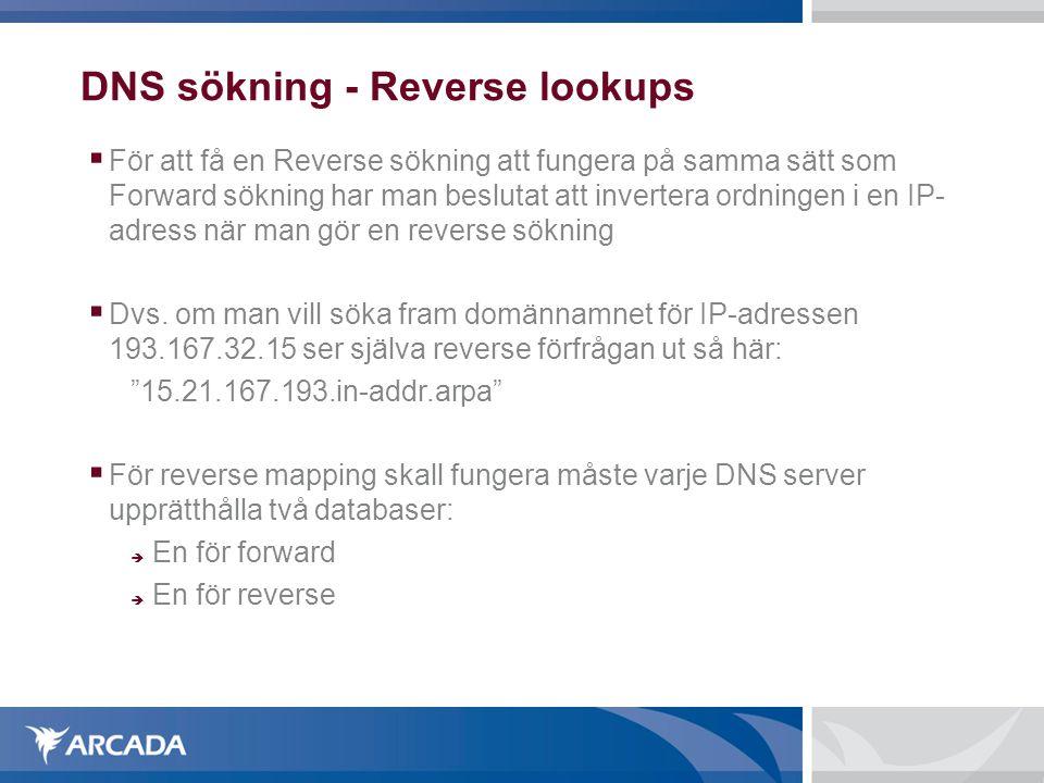 DNS sökning - Reverse lookups
