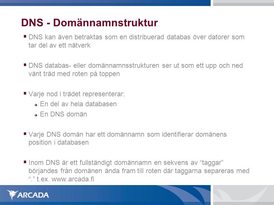 DNS - Domännamnstruktur