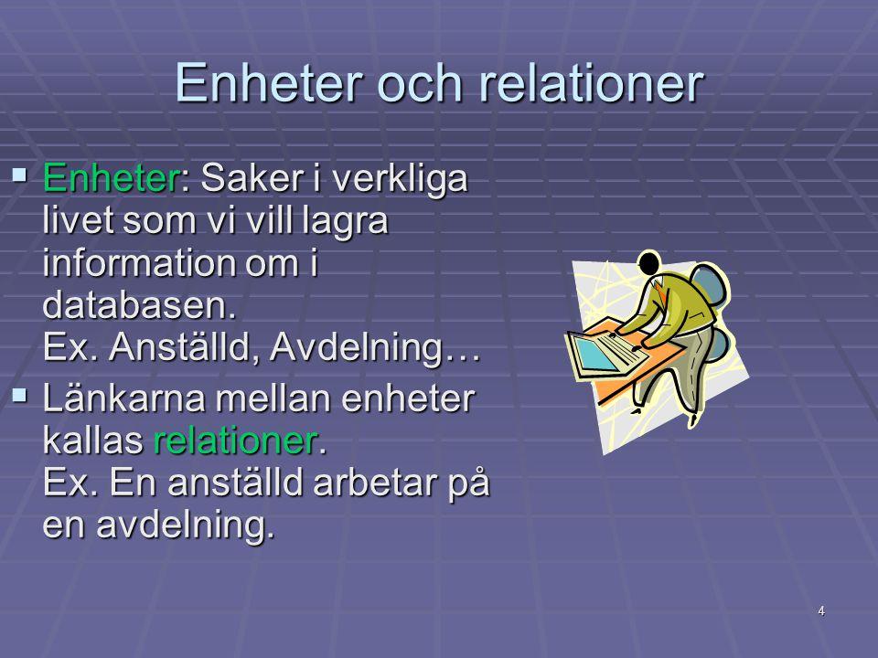Enheter och relationer