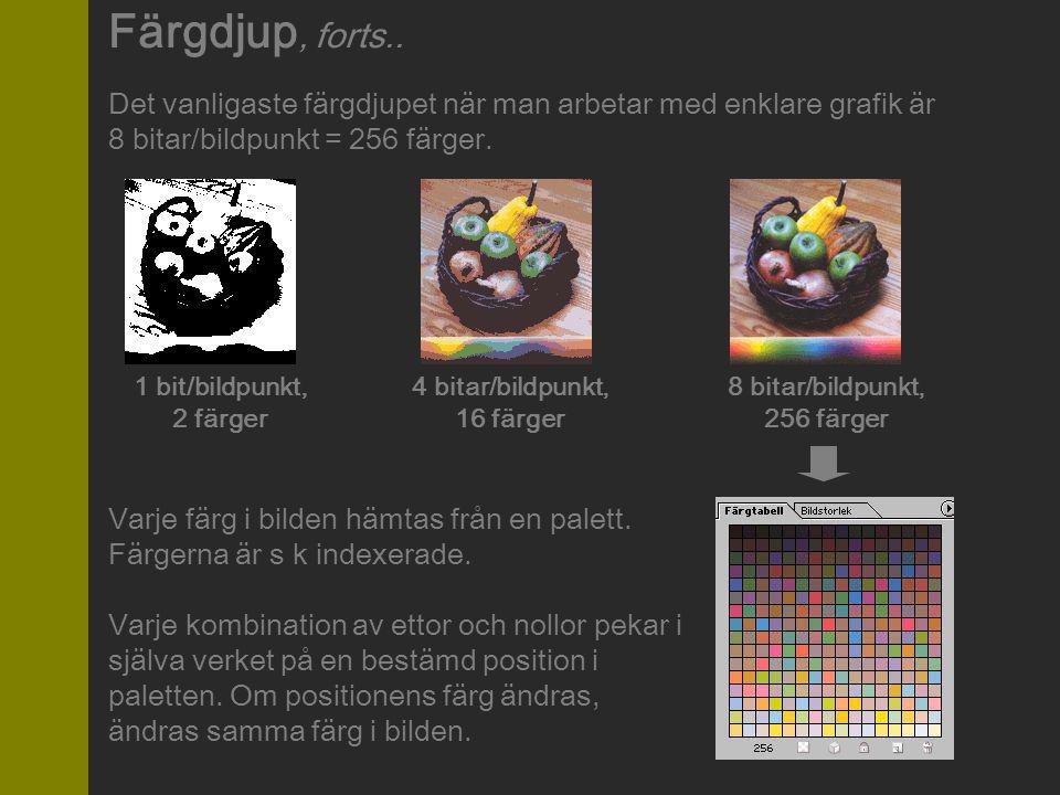 Färgdjup, forts.. Det vanligaste färgdjupet när man arbetar med enklare grafik är. 8 bitar/bildpunkt = 256 färger.