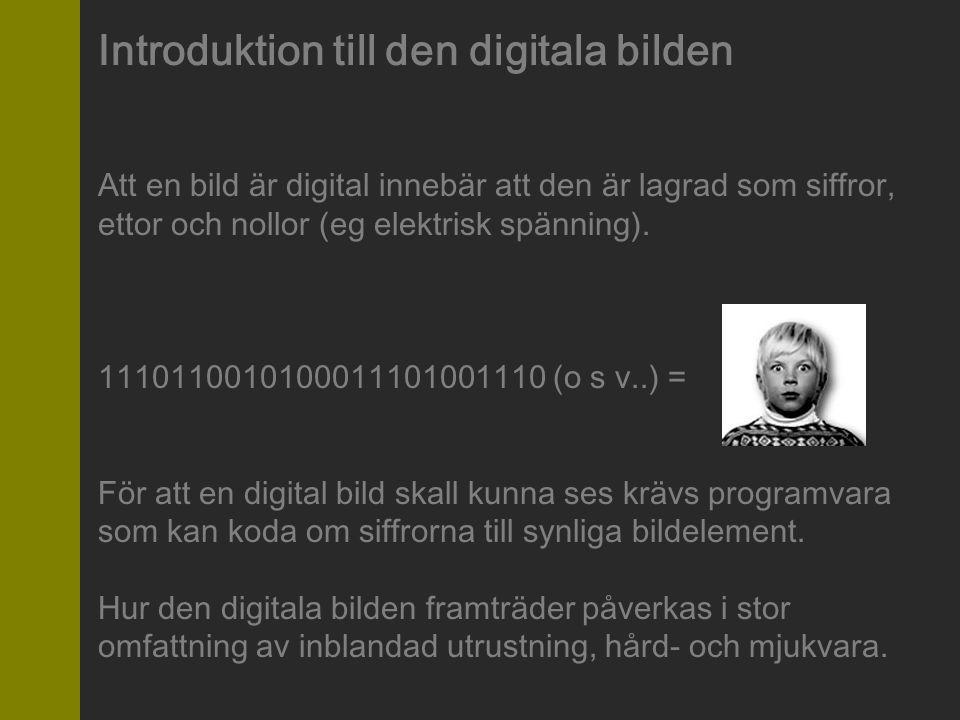 Introduktion till den digitala bilden