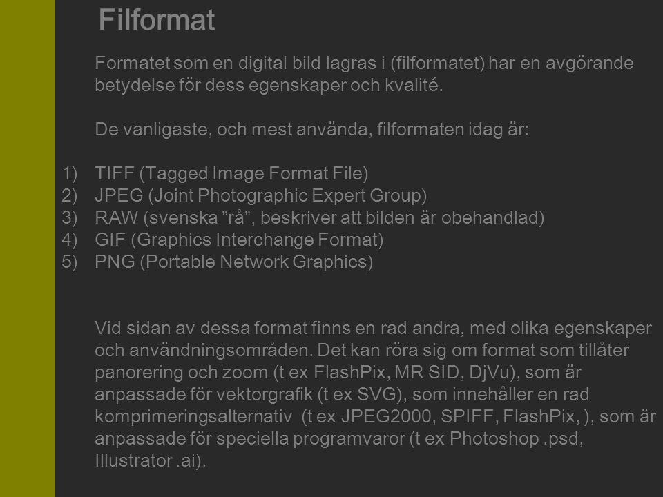 Filformat Formatet som en digital bild lagras i (filformatet) har en avgörande betydelse för dess egenskaper och kvalité.