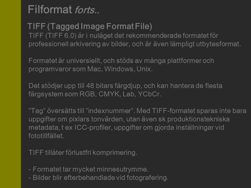 TIFF (Tagged Image Format File)
