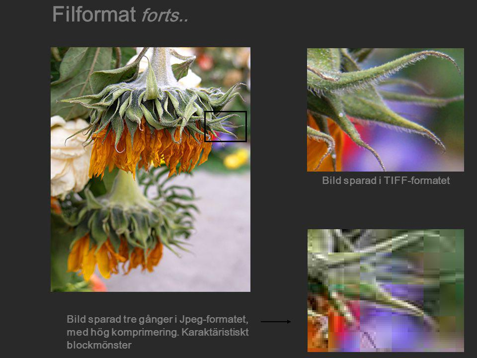 Filformat forts.. Bild sparad i TIFF-formatet