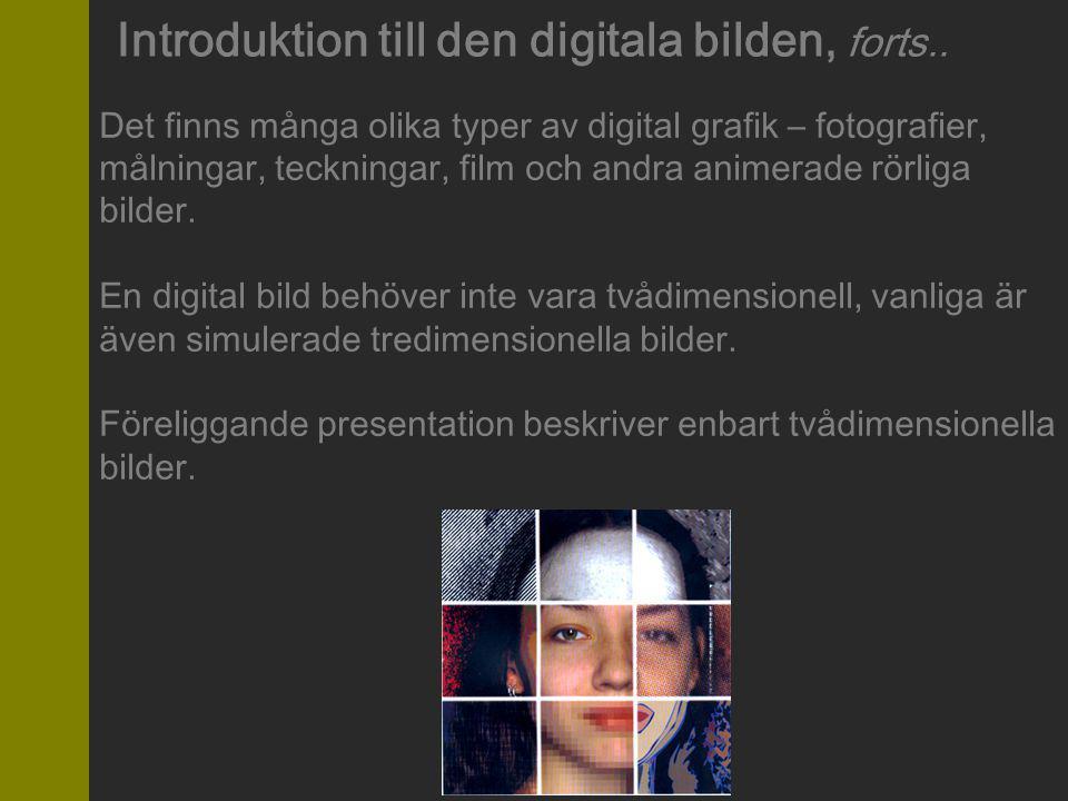 Introduktion till den digitala bilden, forts..