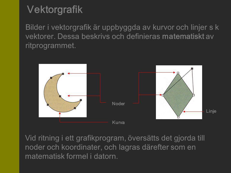 Vektorgrafik Bilder i vektorgrafik är uppbyggda av kurvor och linjer s k vektorer. Dessa beskrivs och definieras matematiskt av ritprogrammet.