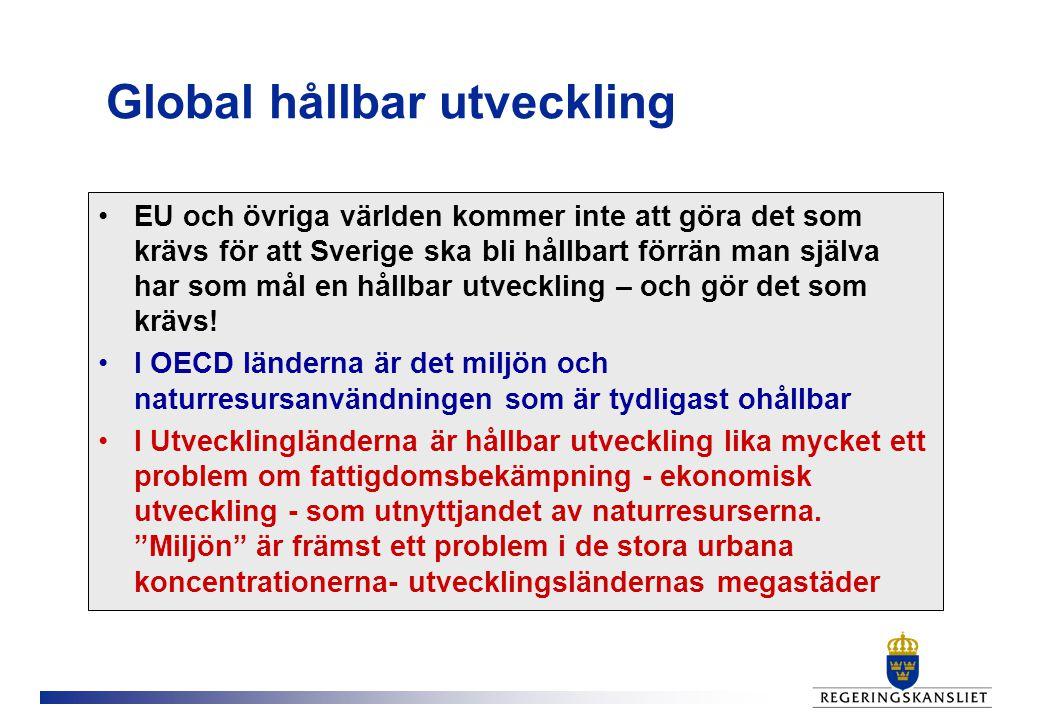 Global hållbar utveckling