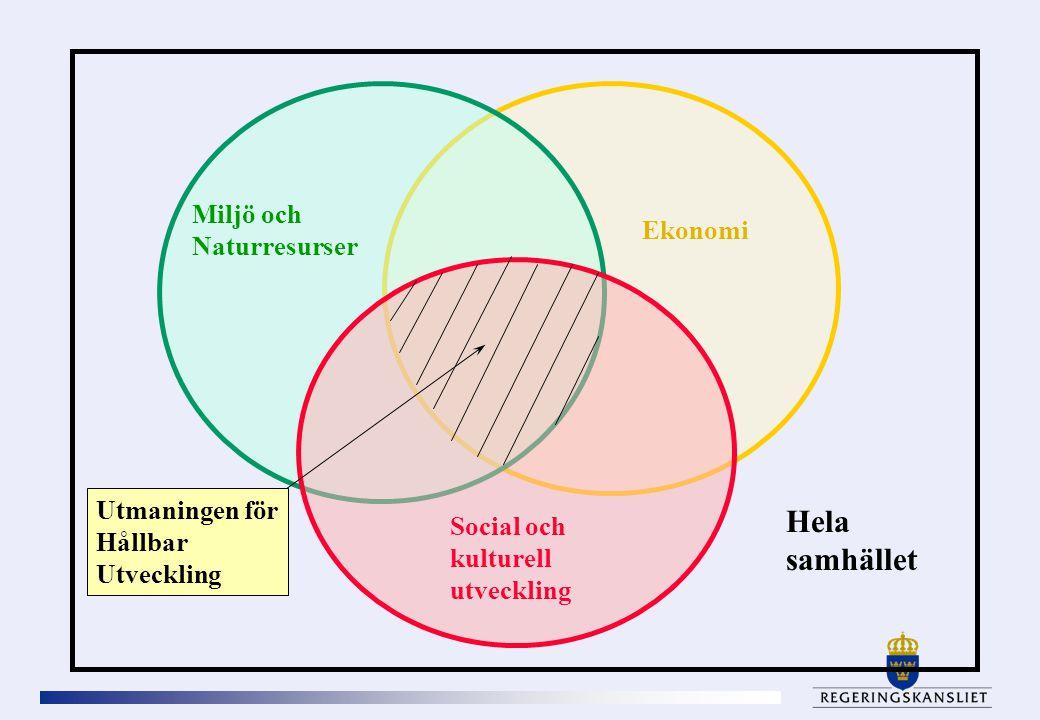 Hela samhället Miljö och Naturresurser Ekonomi