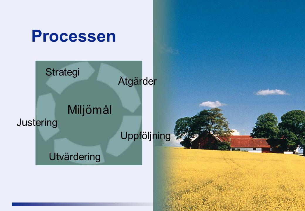 Processen Strategi Åtgärder Miljömål Justering Uppföljning Utvärdering