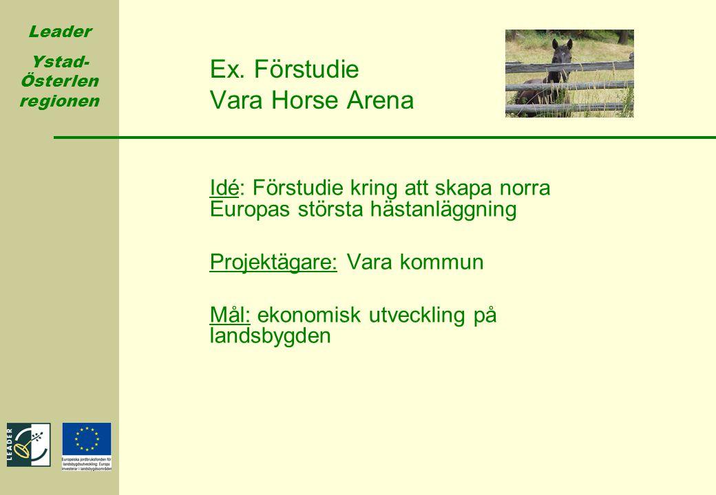 Ex. Förstudie Vara Horse Arena