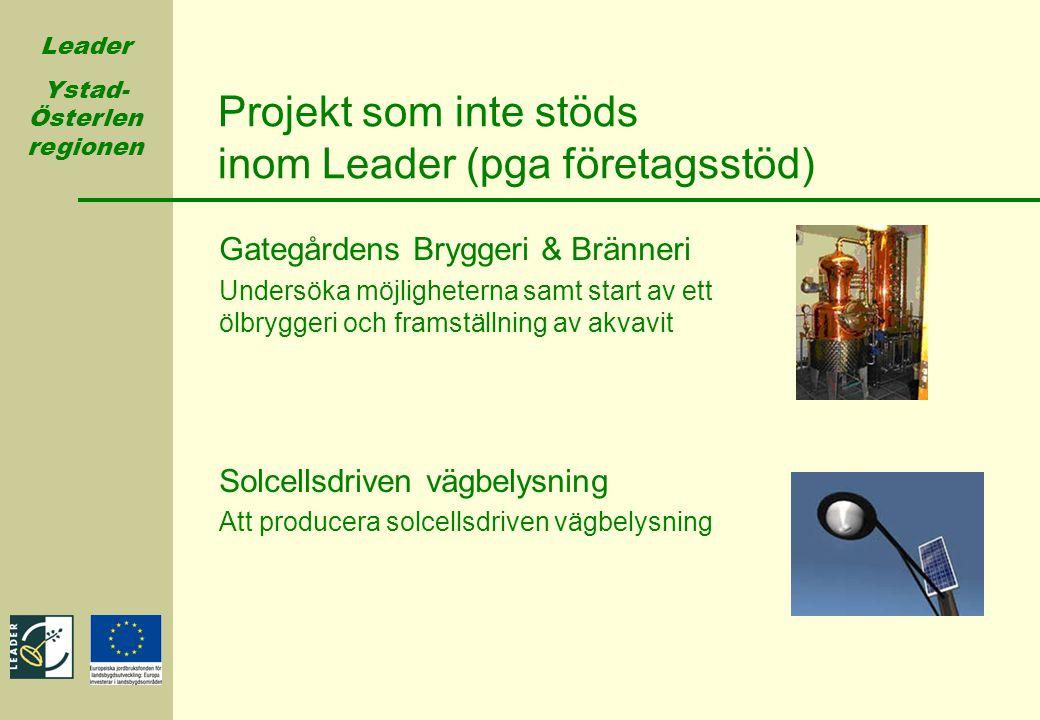 Projekt som inte stöds inom Leader (pga företagsstöd)