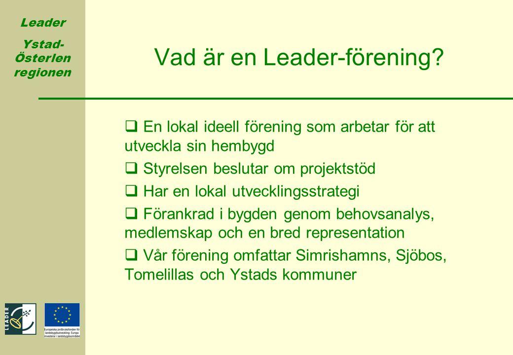Vad är en Leader-förening