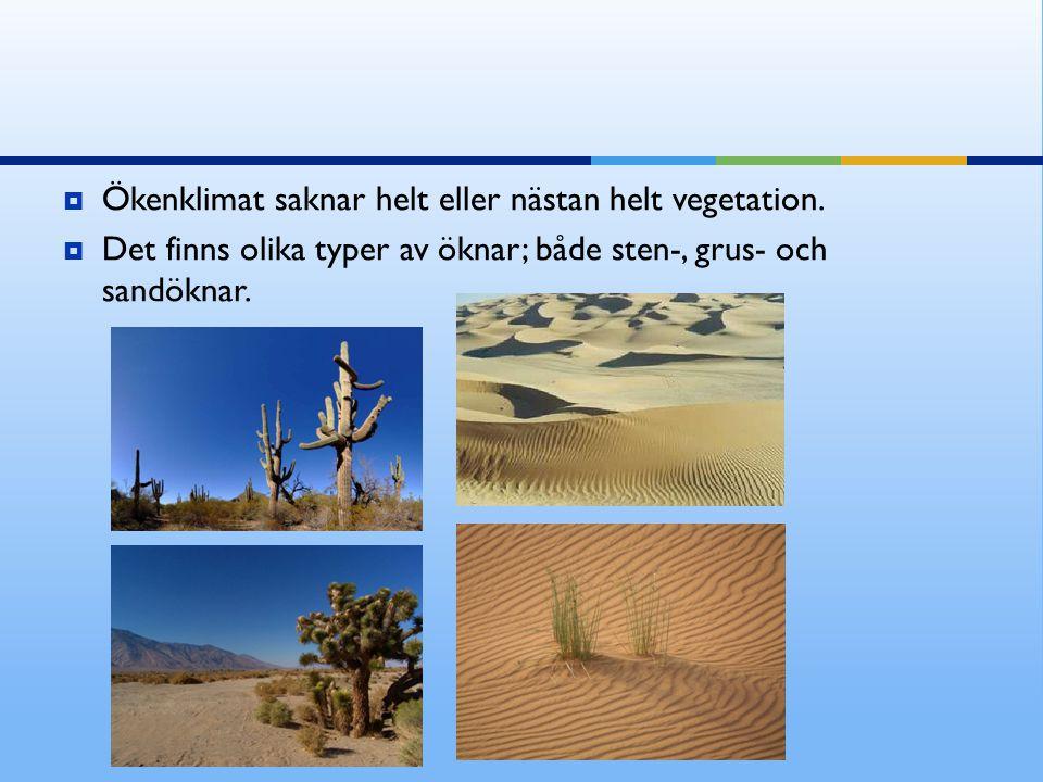 Ökenklimat saknar helt eller nästan helt vegetation.
