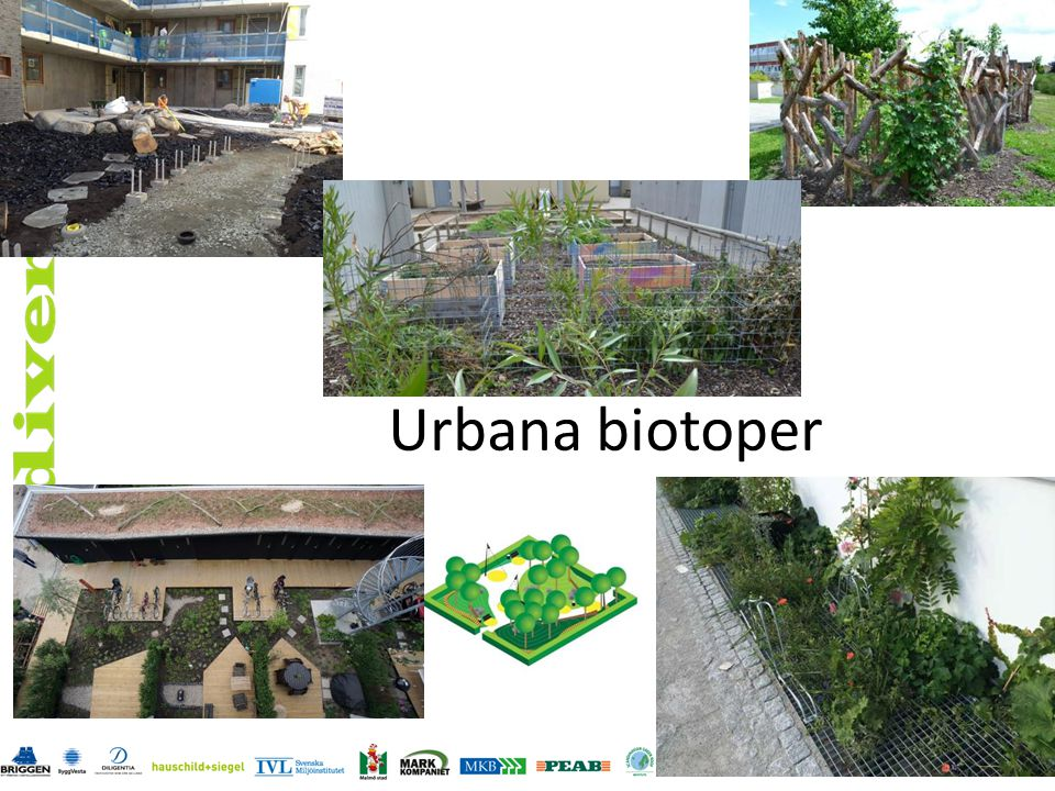 Urbana biotoper
