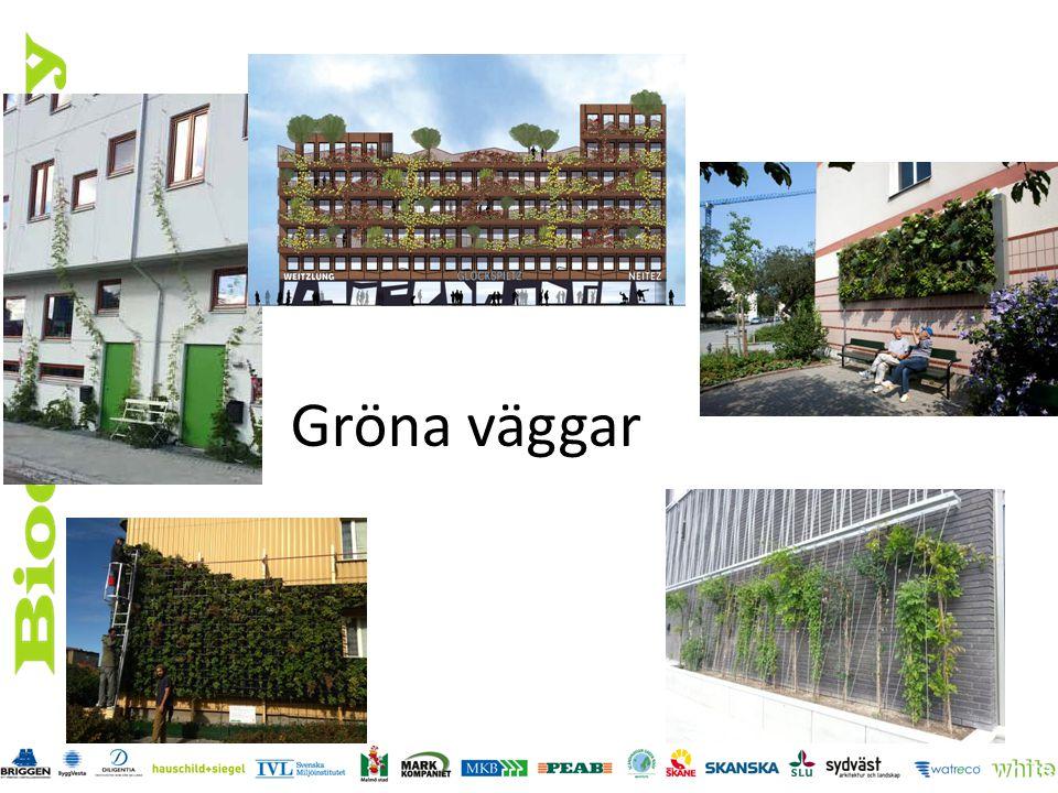 Gröna väggar