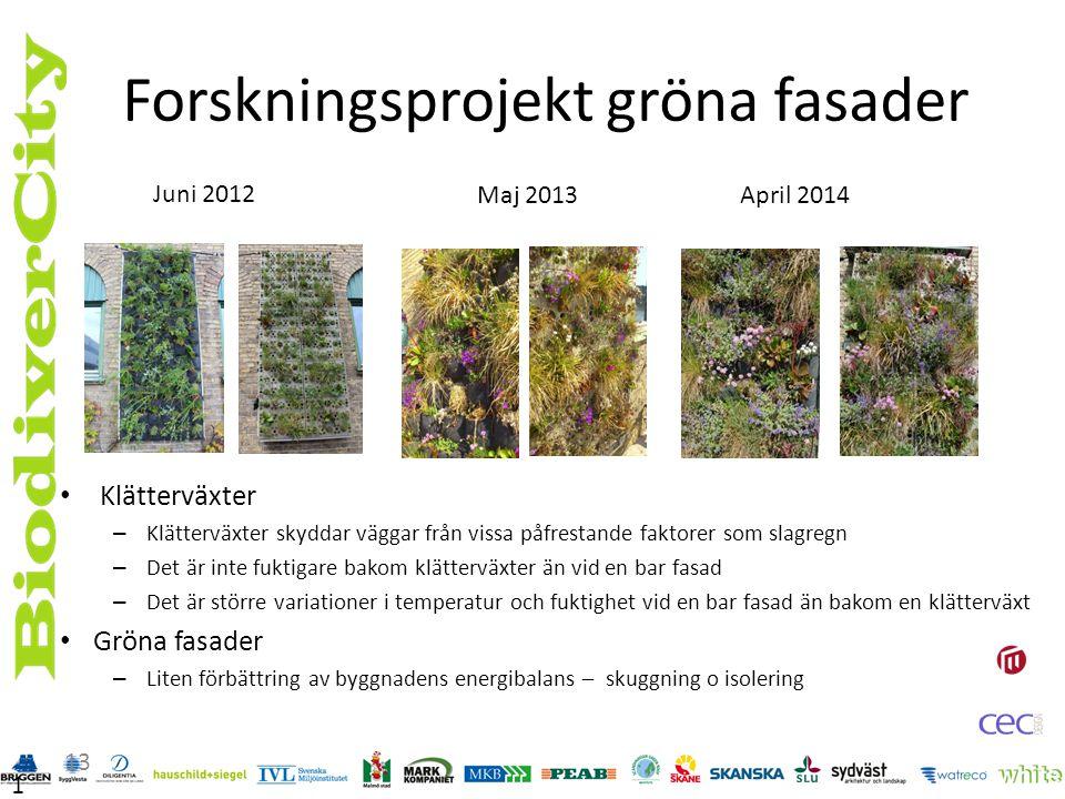 Forskningsprojekt gröna fasader