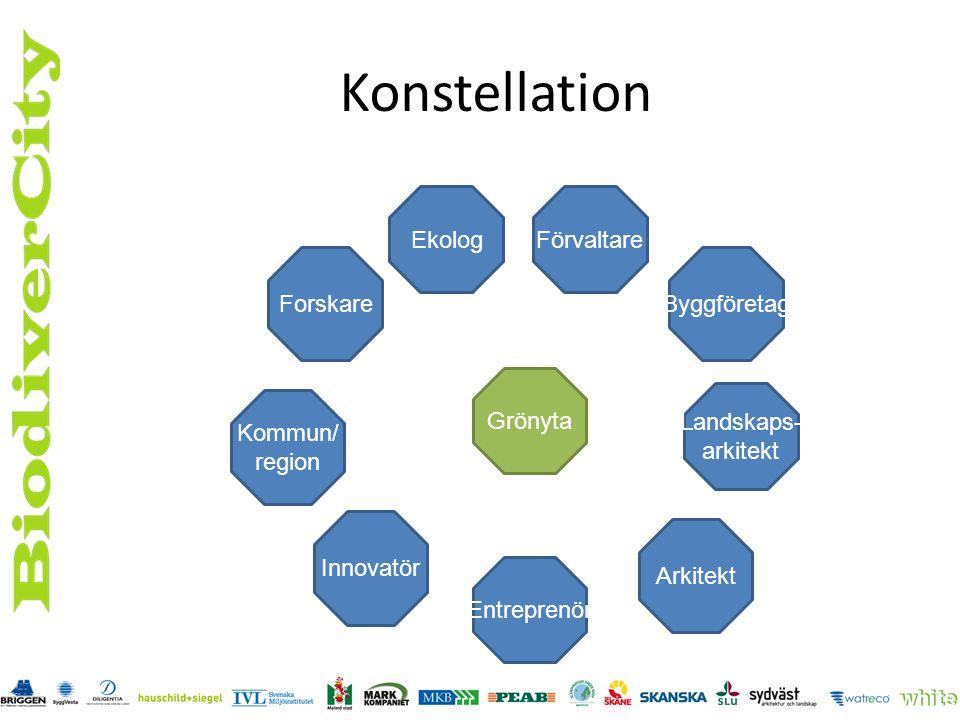 Konstellation Ekolog Förvaltare Forskare Byggföretag Grönyta