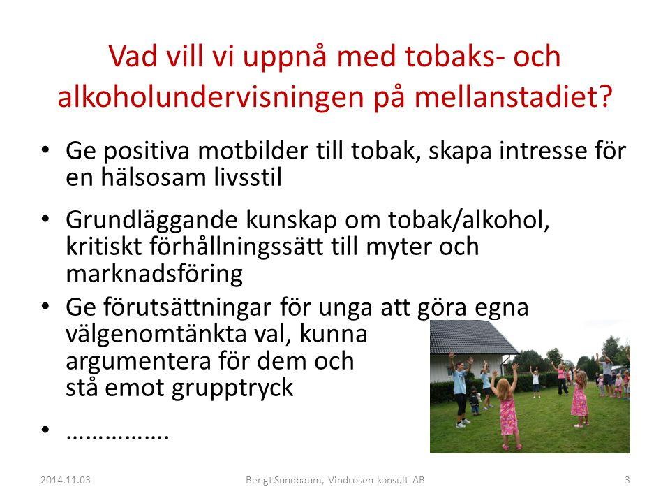 Bengt Sundbaum, Vindrosen konsult AB