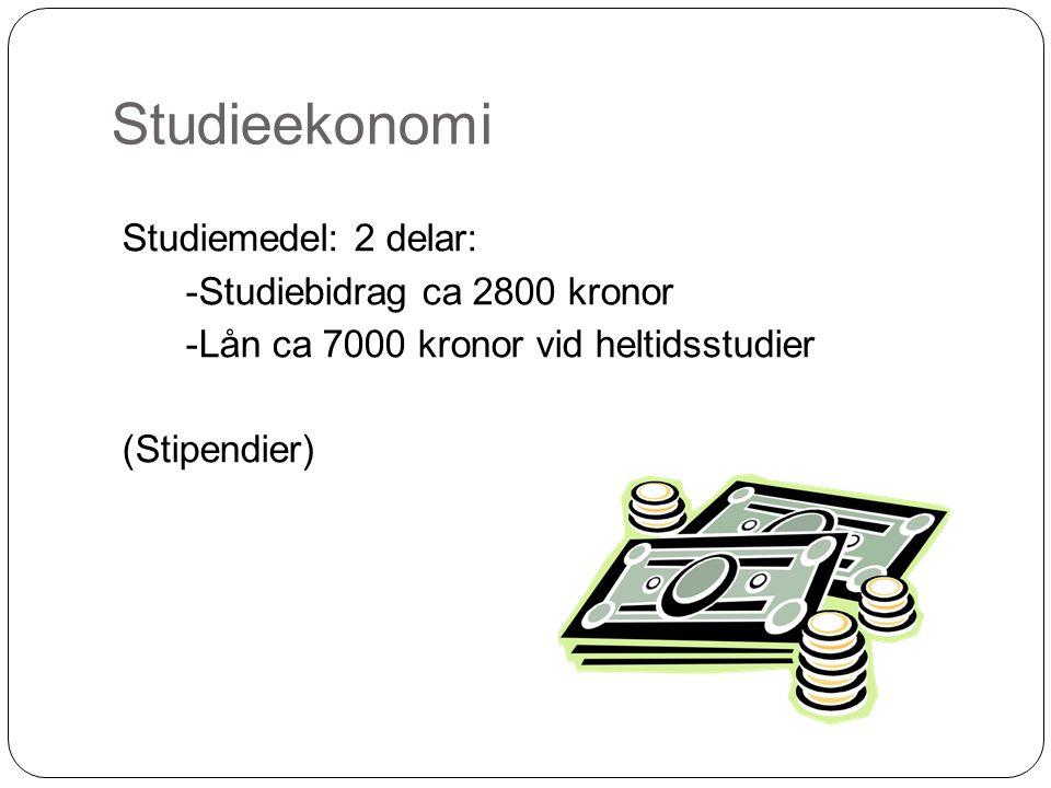 Studieekonomi Studiemedel: 2 delar: -Studiebidrag ca 2800 kronor