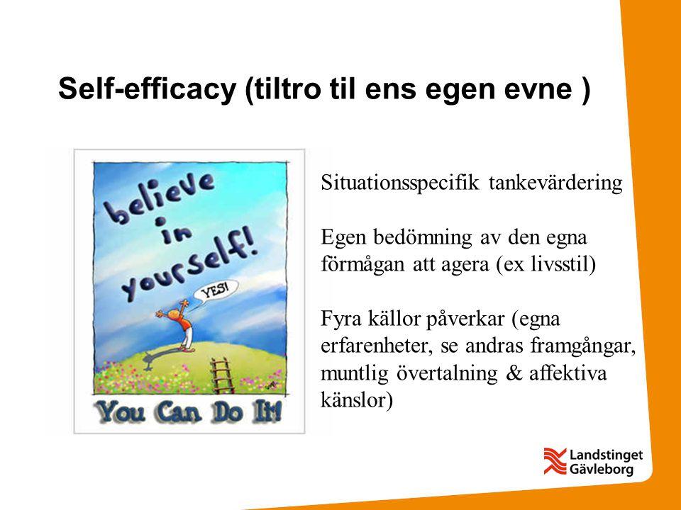 Self-efficacy (tiltro til ens egen evne )