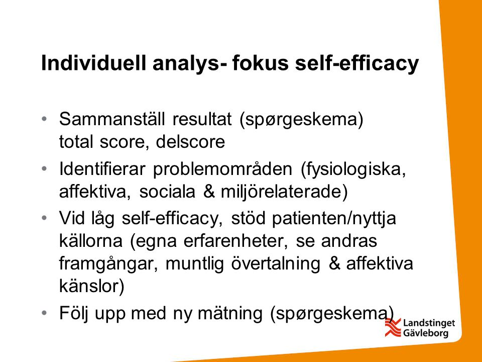 Individuell analys- fokus self-efficacy