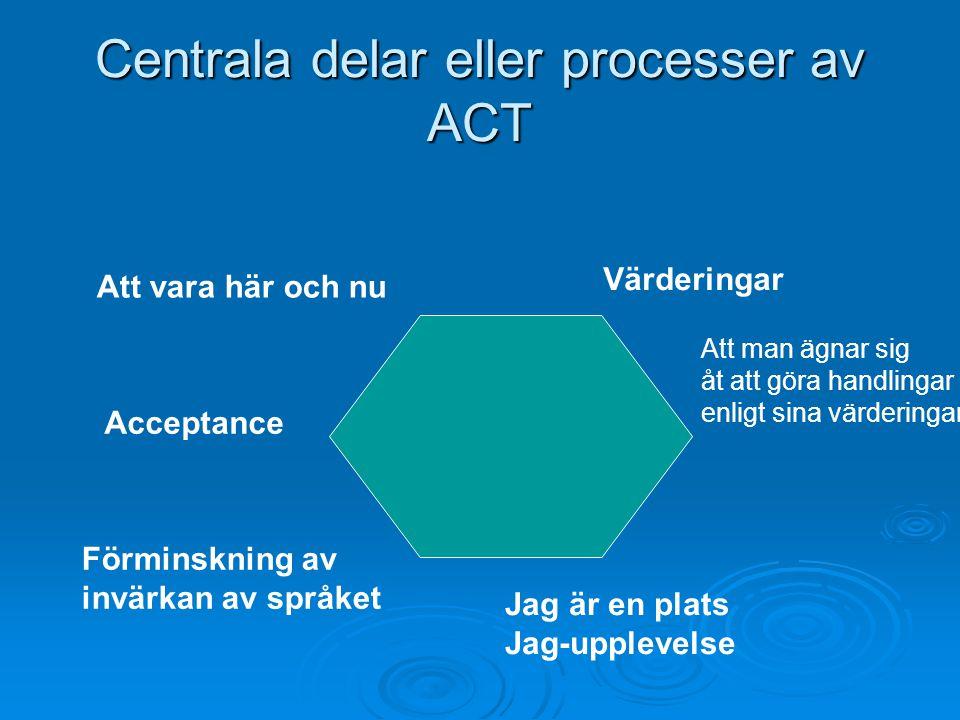 Centrala delar eller processer av ACT
