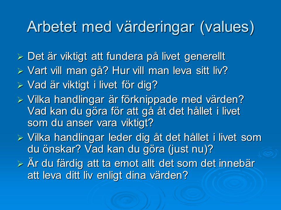 Arbetet med värderingar (values)