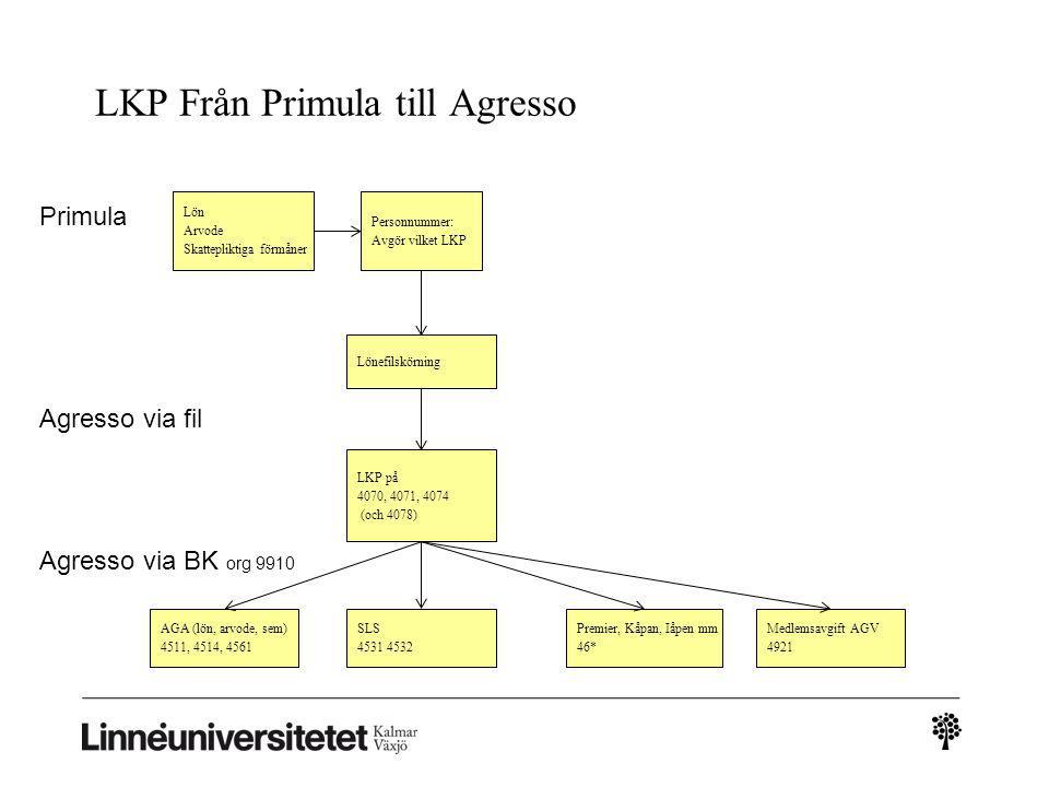 LKP Från Primula till Agresso