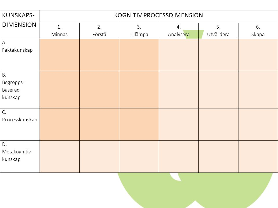KOGNITIV PROCESSDIMENSION