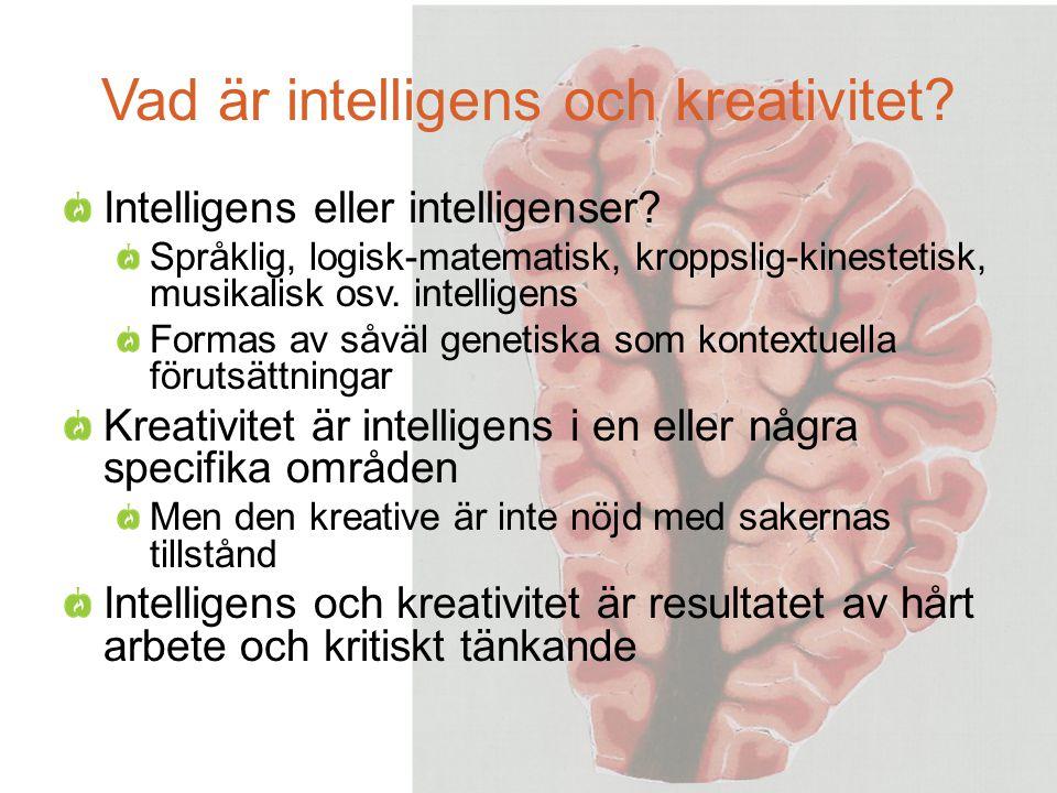 Vad är intelligens och kreativitet