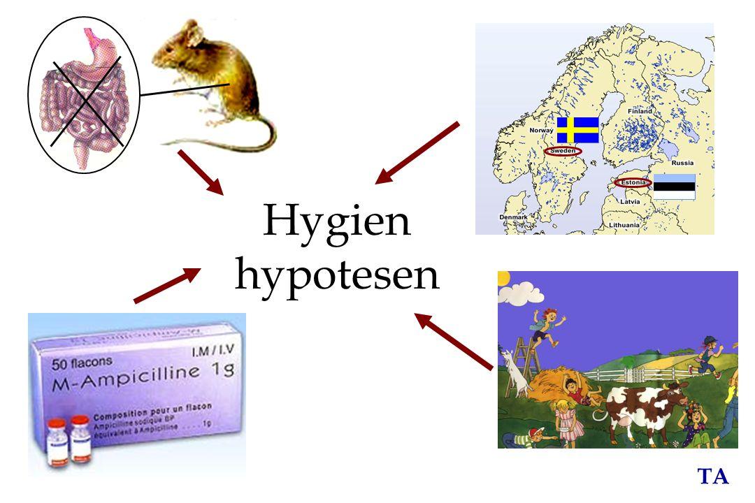 Hygien hypotesen Börjar först med lite bakgrund.