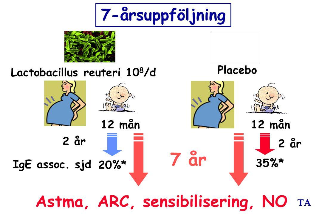 7 år 7-årsuppföljning Astma, ARC, sensibilisering, NO Placebo