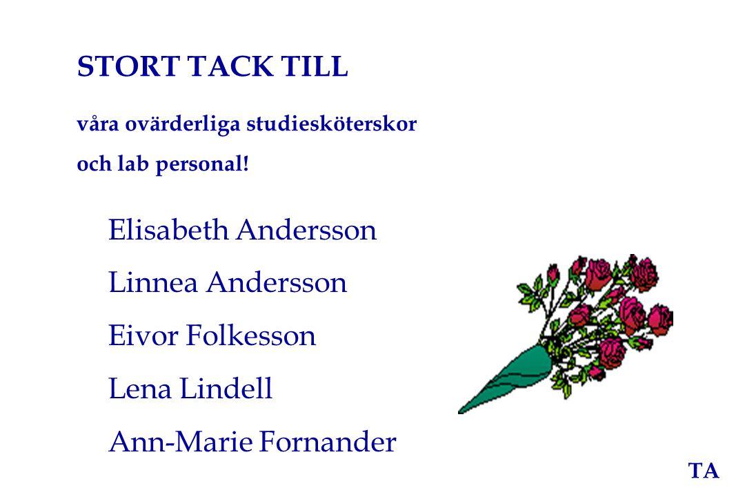 STORT TACK TILL Elisabeth Andersson Linnea Andersson Eivor Folkesson