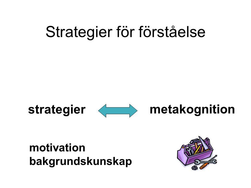 Strategier för förståelse