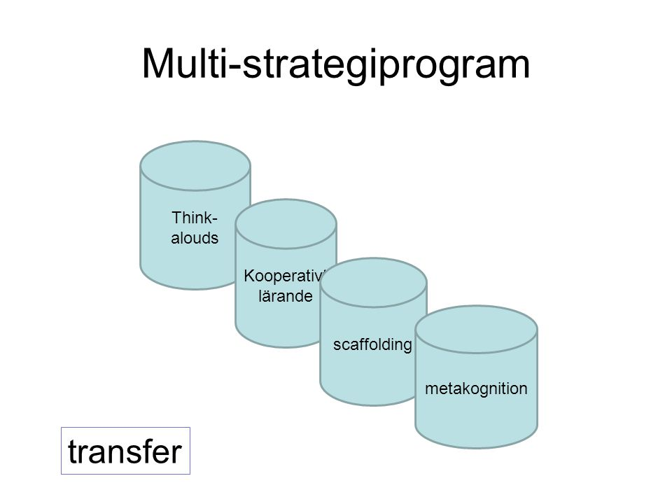 Multi-strategiprogram