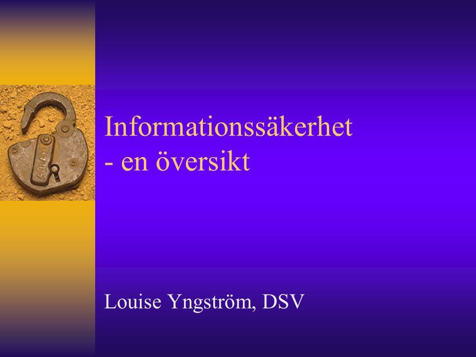 Informationssäkerhet - en översikt