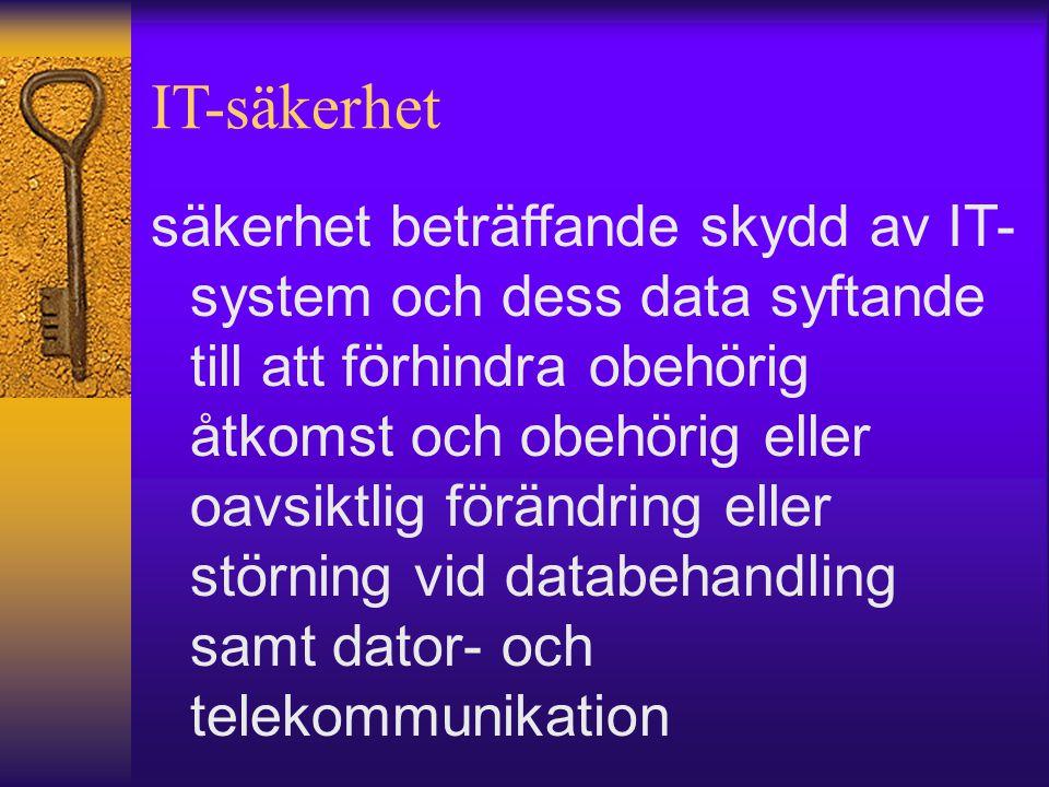 IT-säkerhet