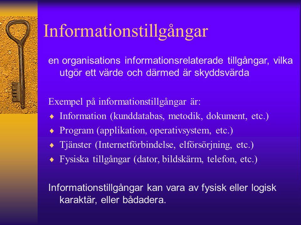 Informationstillgångar