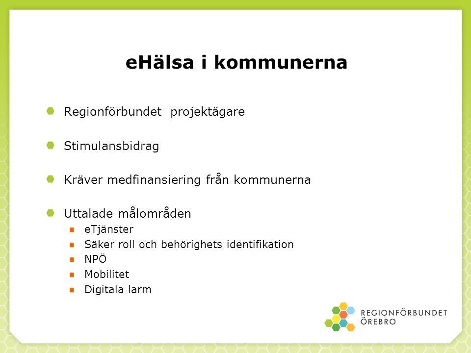 eHälsa i kommunerna Regionförbundet projektägare Stimulansbidrag