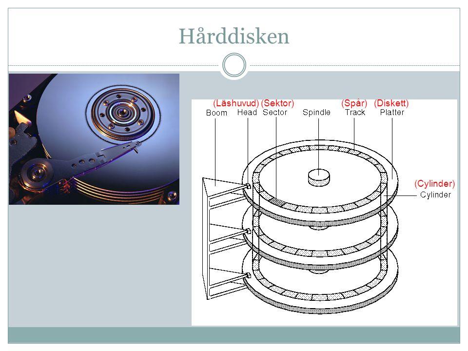 Hårddisken (Läshuvud) (Sektor) (Spår) (Diskett) (Cylinder)