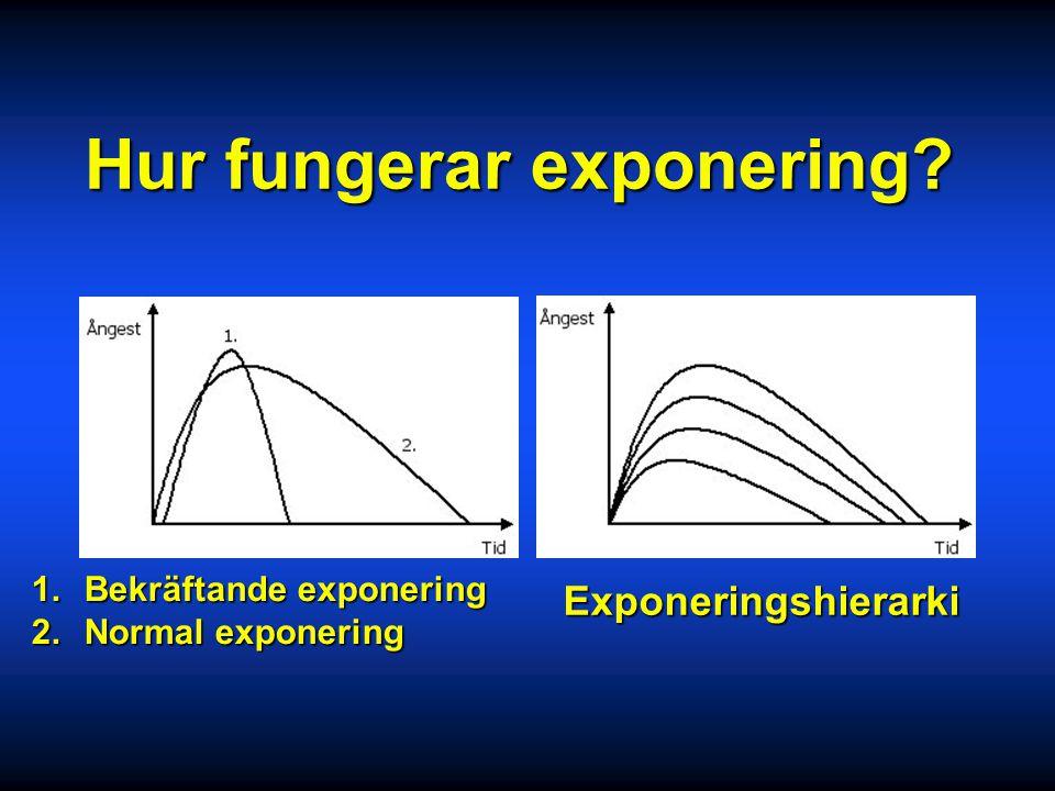 Hur fungerar exponering