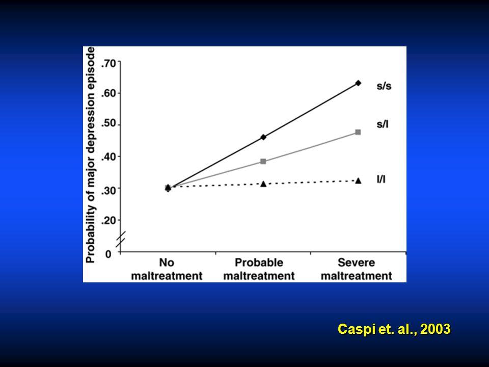 Caspi et. al., 2003
