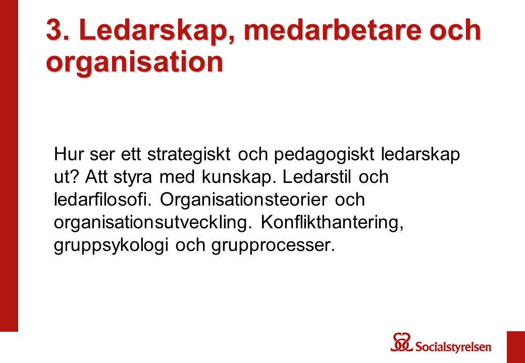 3. Ledarskap, medarbetare och organisation