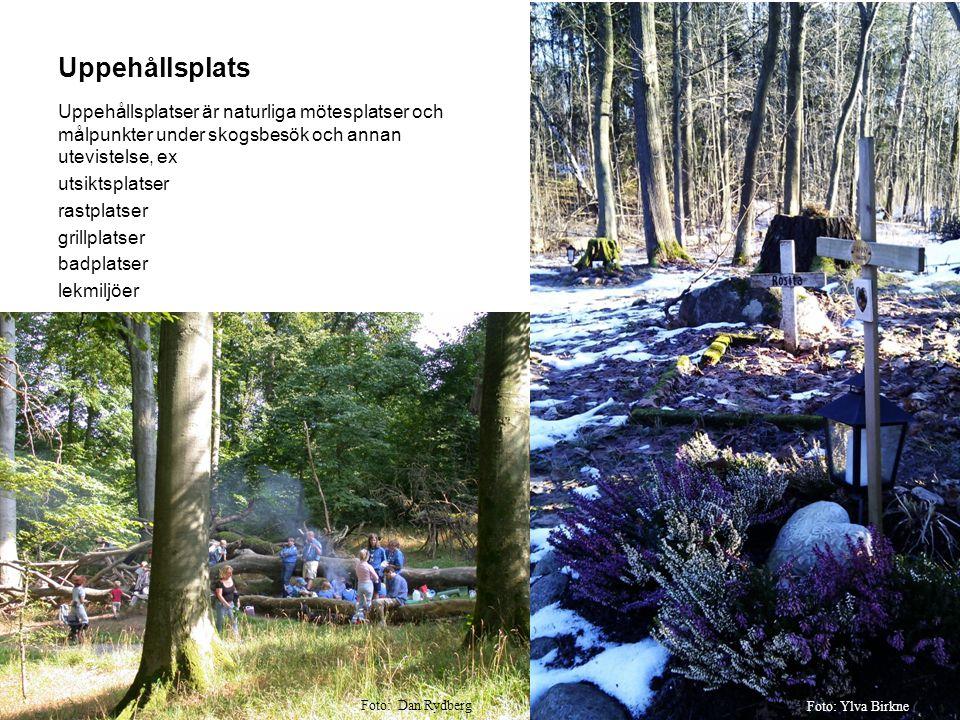 Uppehållsplats Uppehållsplatser är naturliga mötesplatser och målpunkter under skogsbesök och annan utevistelse, ex.