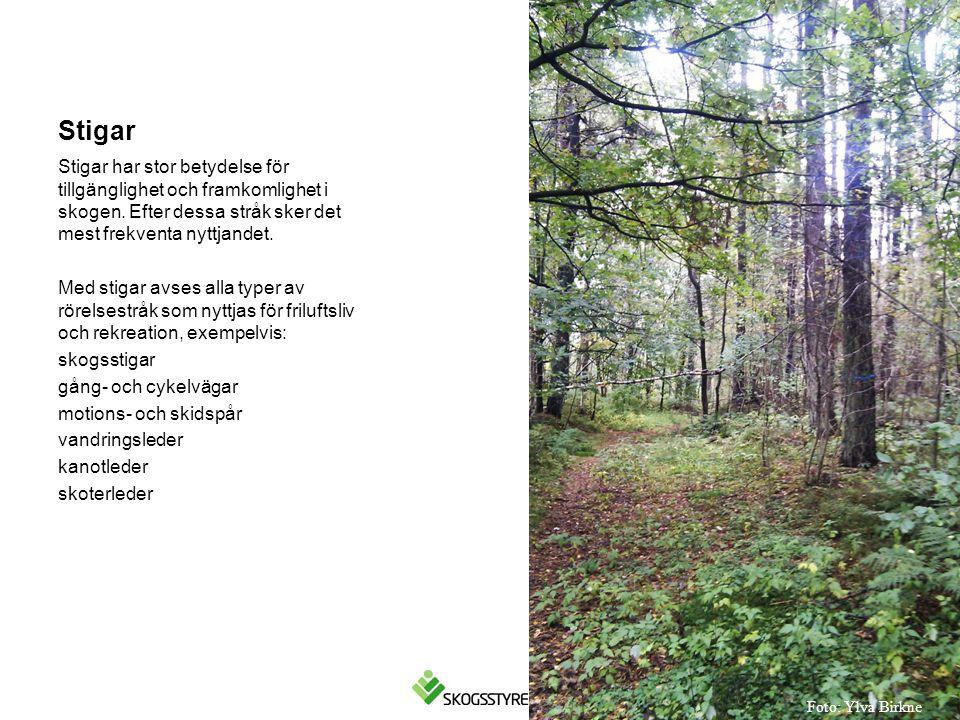Stigar Stigar har stor betydelse för tillgänglighet och framkomlighet i skogen. Efter dessa stråk sker det mest frekventa nyttjandet.