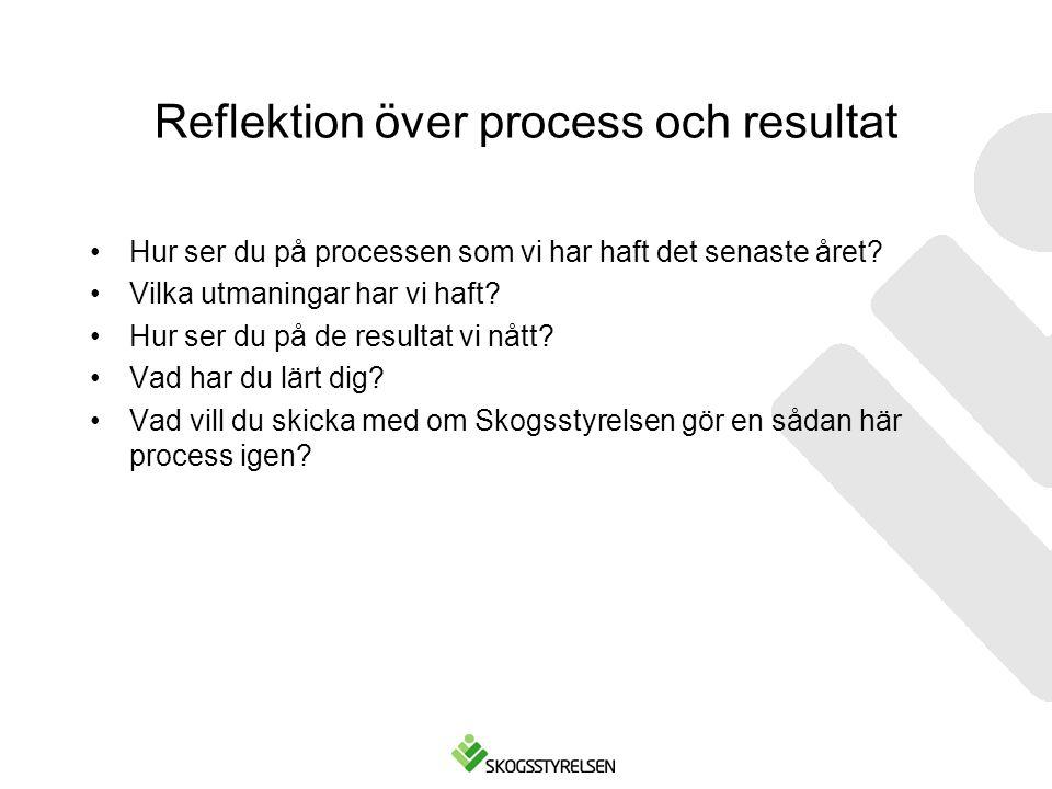 Reflektion över process och resultat