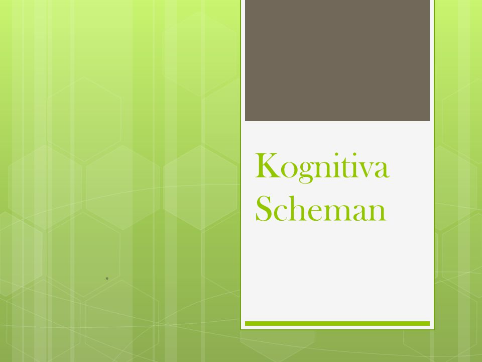 Kognitiva Scheman