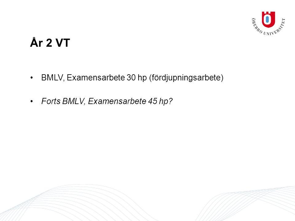 År 2 VT BMLV, Examensarbete 30 hp (fördjupningsarbete)