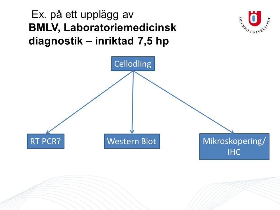 Ex. på ett upplägg av BMLV, Laboratoriemedicinsk diagnostik – inriktad 7,5 hp